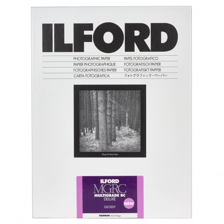 1x100 Ilford MG RC DL  1M 10,5x14,8